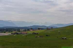 Spaziergang Eschacher Weiher
