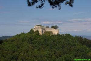 Ausblick auf die Burg