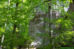 Weg zum Bad Uracher Wasserfall