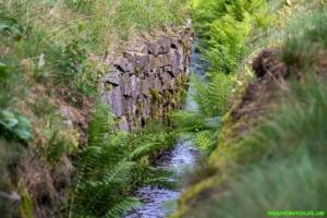 Wanderung Wasserregal