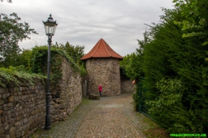 Die Stadtmauer von Osterode