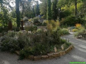 Röttingen Paracelsus Garten